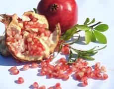 The Pomegranate Lesson